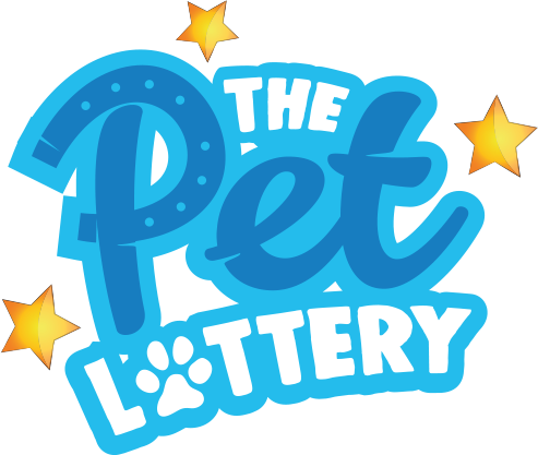 The Pet Lottery